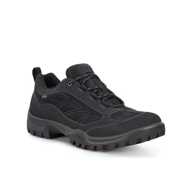 ECCO Xpedition Drak 2 Low GTX  - Super-comfortable hiking shoes with Receptor™ technology.