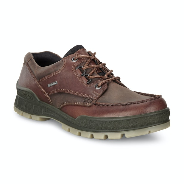 Ecco Track 25 GTX - Tough, leather walking shoes with Gore-Tex® waterproof technology.