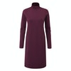 Women's Radiant Merino Dress  - Alternative View 1