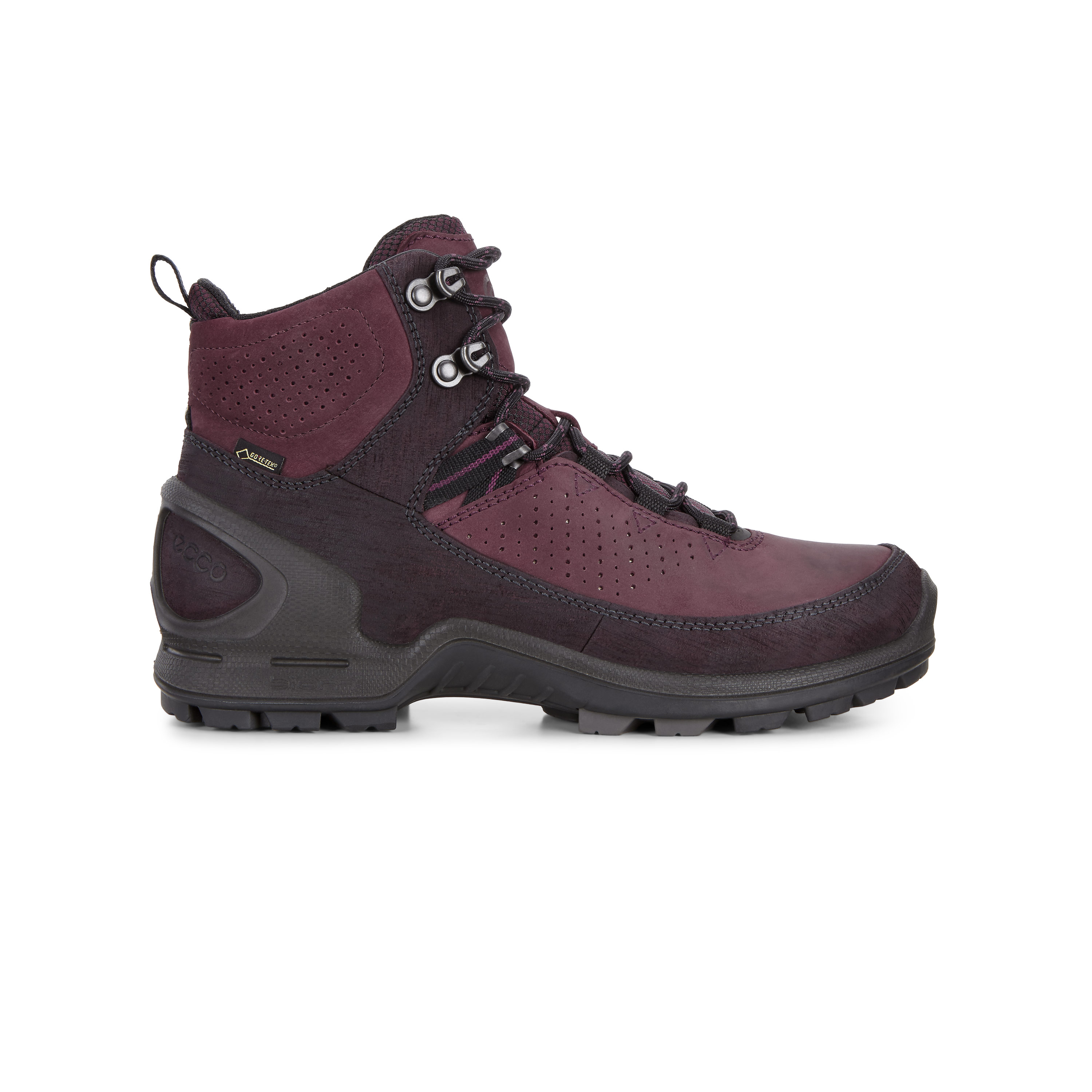 Women's ECCO Biom Terrain Renk GTX Tough hiking boots with